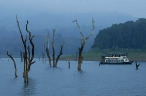 boat, river, foggy weather, thekkady