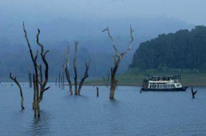 boat, river, foggy weather, thekkady