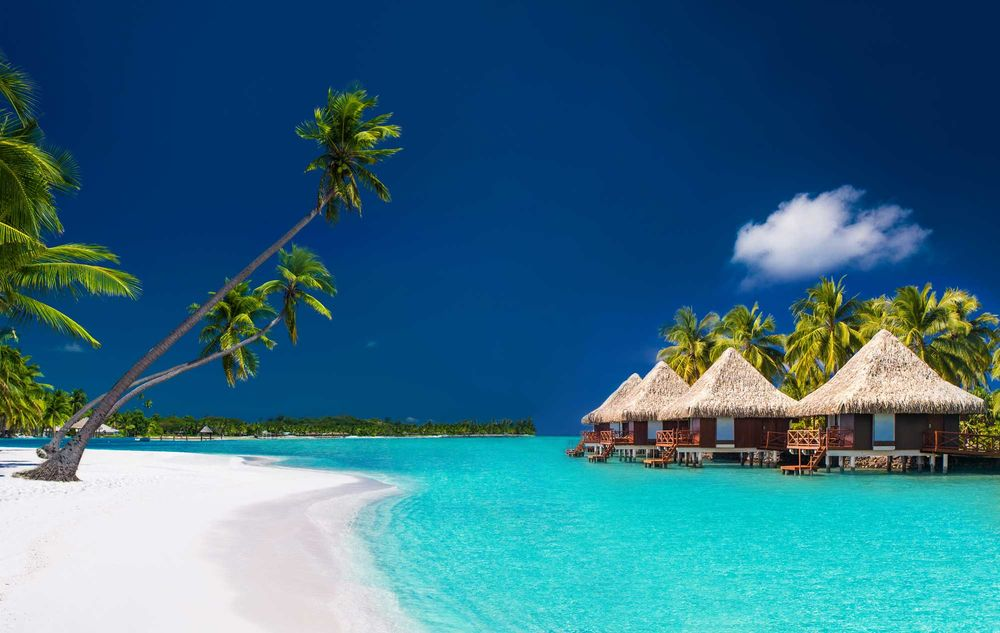 palm trees, beach front, little huts, clear blue skies,