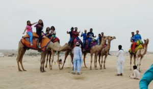 group of people riding on camel,