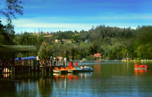 people boating on a lake in kodaikanal, trees