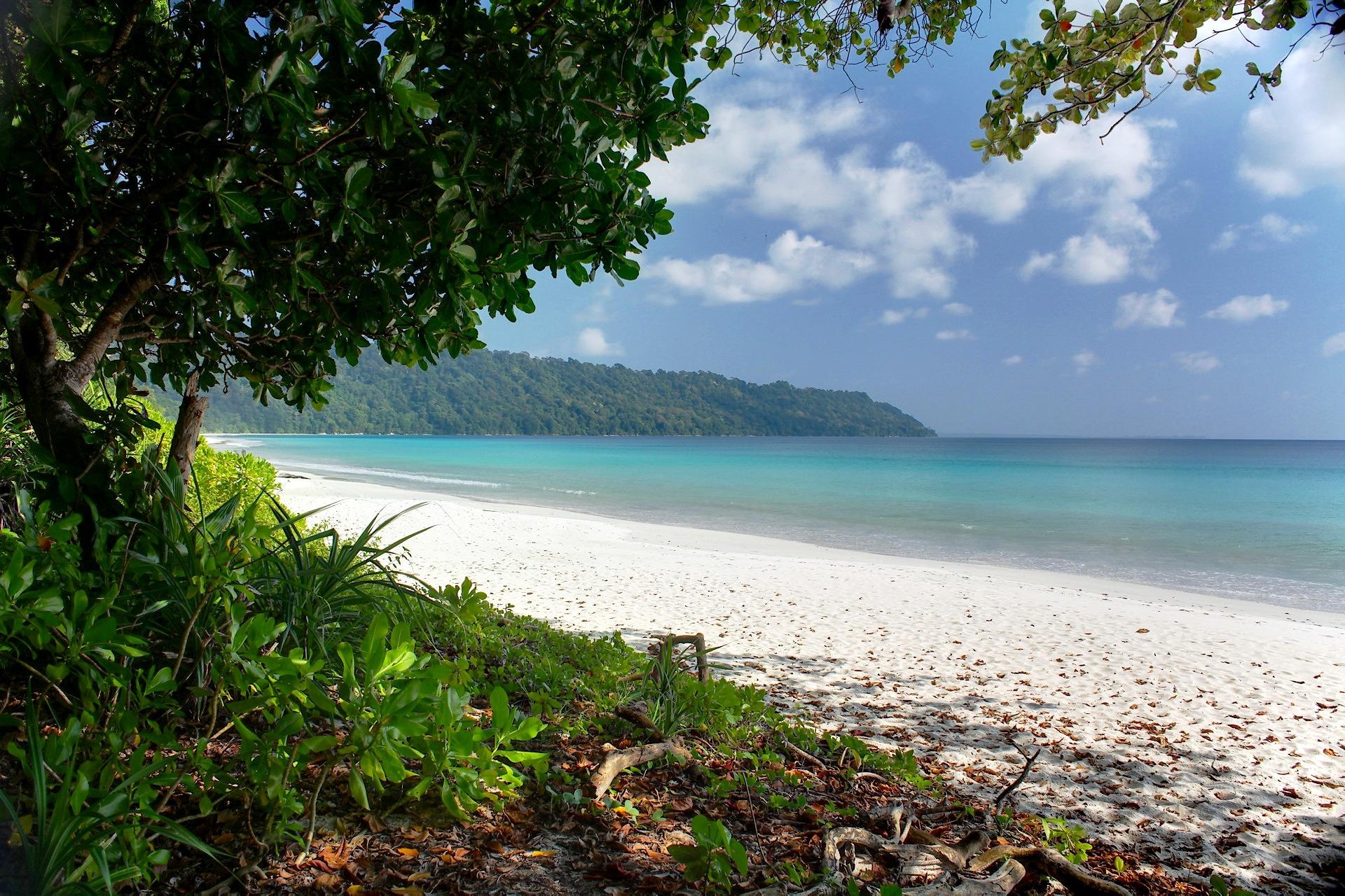 beach, water, forrest, andaman, island