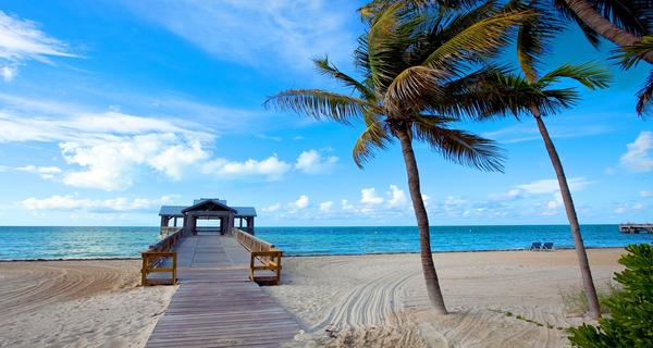 beach, pier, palm trees