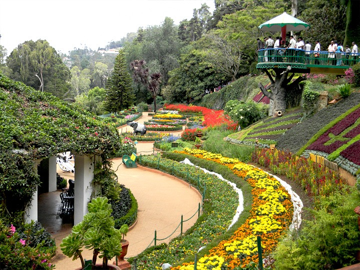 botanical garden of ooty