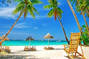 palm trees, beach water,resting beach chair with shades