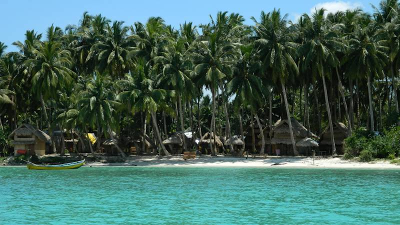 boat, big palm trees, little huts