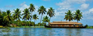 palm trees, houseboat