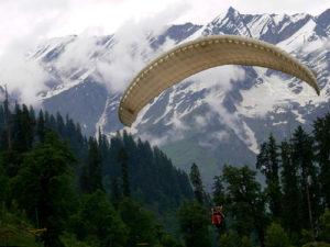 paragliding, mountain, trees
