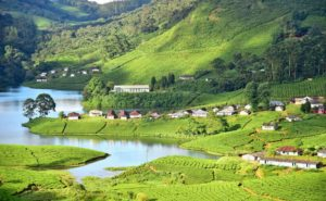 hill of munnar and houses