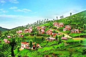 houses on the hill of ooty