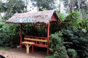 spice garden in munnar