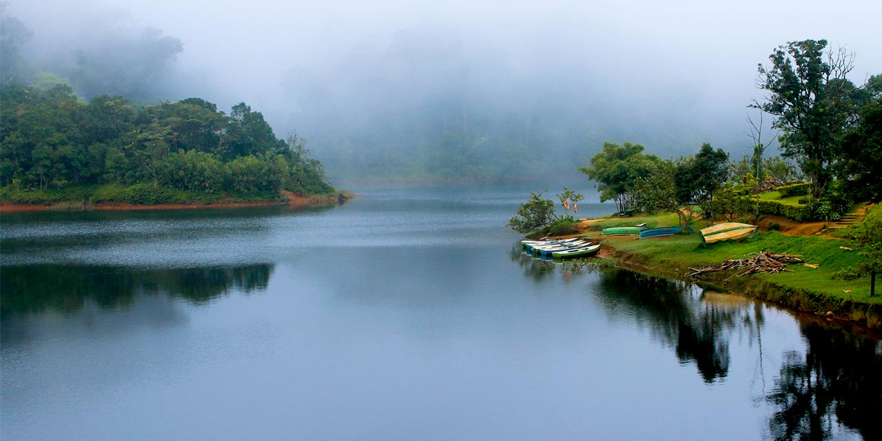 foggy weather in thekkady
