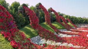 flower garden, dubai