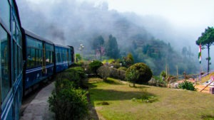 a toy train travelling by a garden