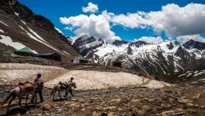 two people, two horse walking on mountain
