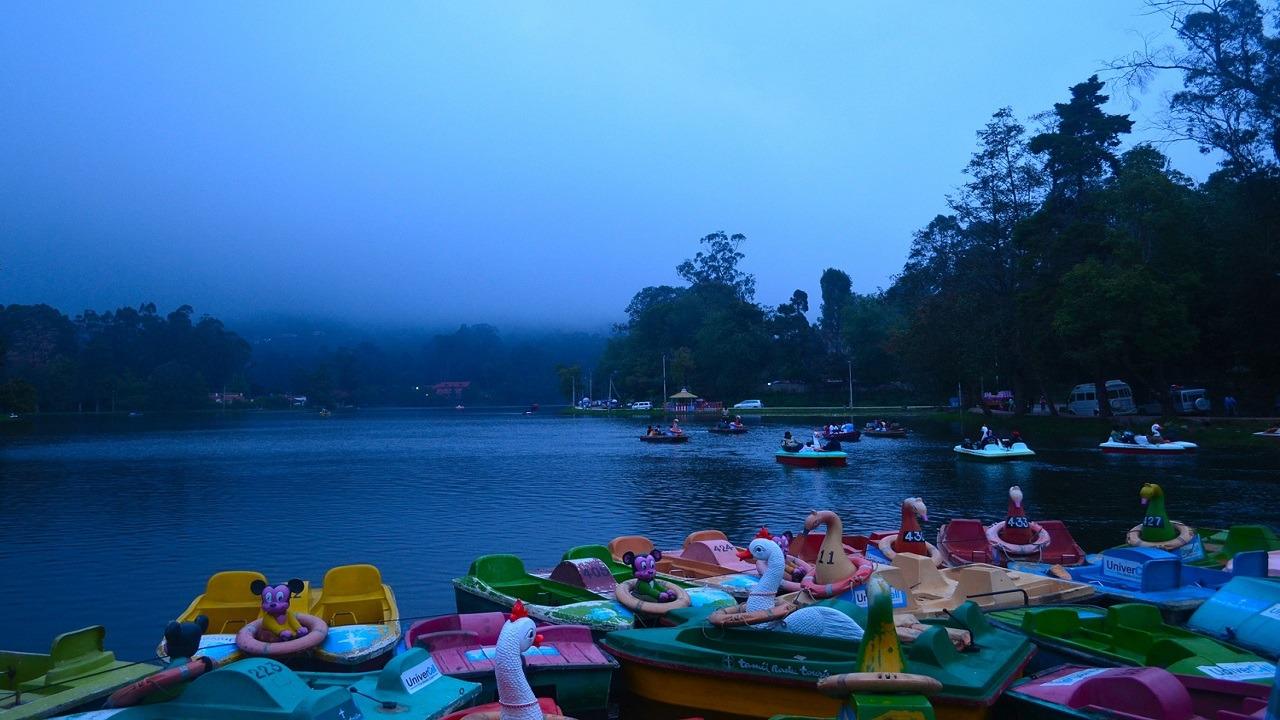 paddle boats, foggy skies, people riding paddle boats