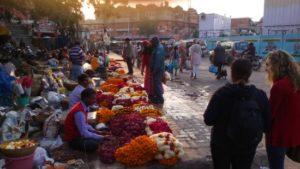 people travelling through flower bazaar