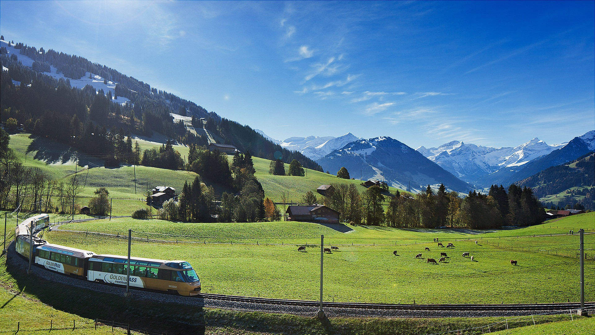 mountains, green fields, cattles grazing, and a train